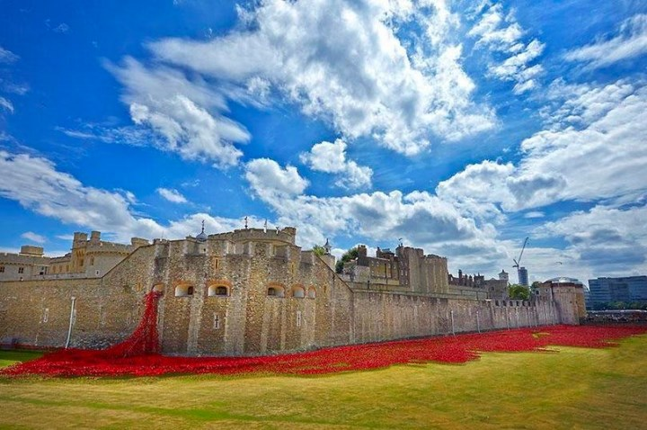 Poppy installation - Tower of London - summer 2014